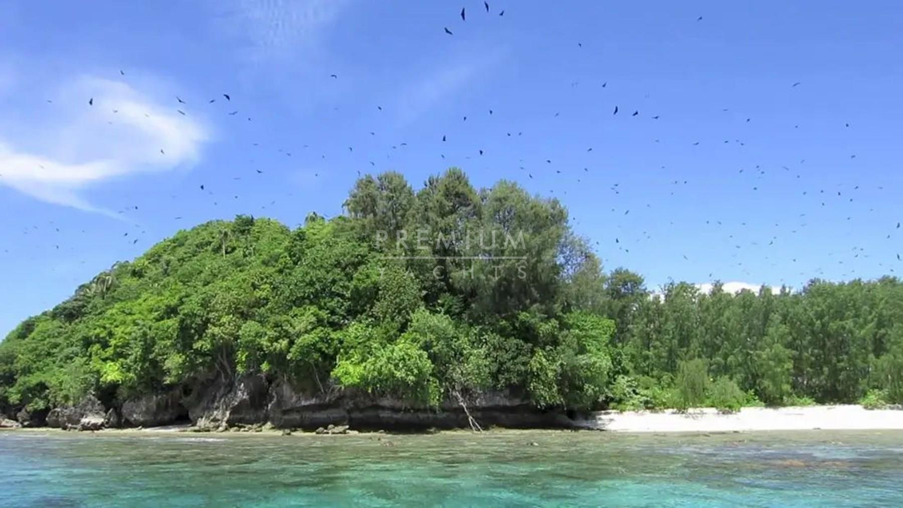 Mioskon Bay, the bats island